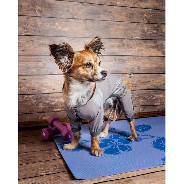 Dog Helios Namastail Full Body Performance Yoga Dog Hoodie Tracksuit