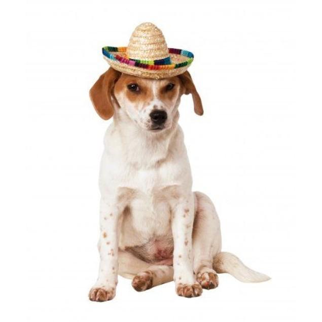 Multicolored Pet Sombrero Dog Costume Mexican Mariachi Puppy Taco Bell