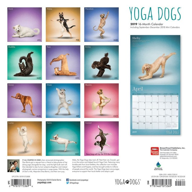 Yoga Dogs Wall Calendar,  by BROWNT