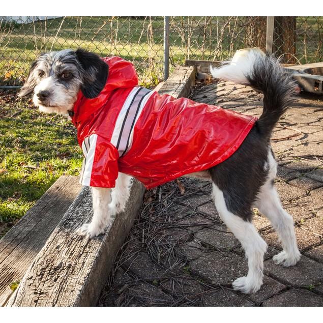 Reflecta-Glow Waterproof Adjustable PVC Dog Raincoat w/Removable Hood