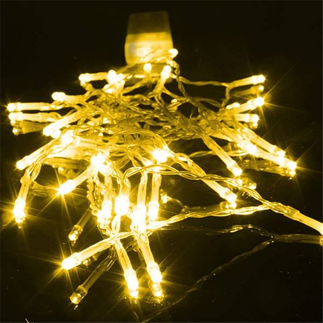 1M-10 LED Bulbs String Lights