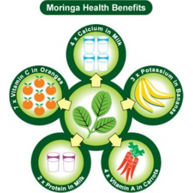 Moringa Oleifera Leaf Extract Max Strength 1,200mg Per Daily Serving