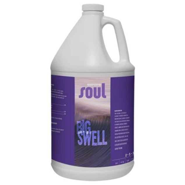 Soul Big Swell Quart (12/Cs)