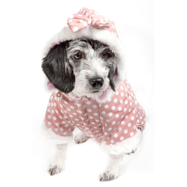 Polka-Dot Couture-Bow Pet Hoodie Sweater