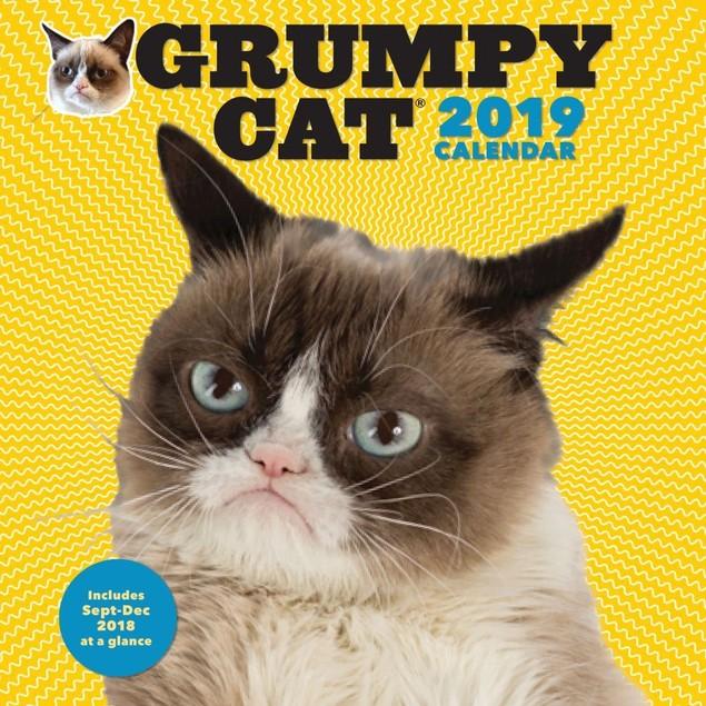 Grumpy Cat Wall Calendar, Grumpy Cat by Calendars