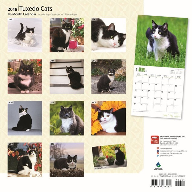 Cats Tuxedo Wall Calendar, Cat Breeds by Calendars