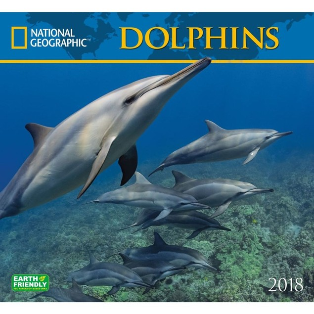Dolphins NG Wall Calendar, Whales | Dolphins by Calendars