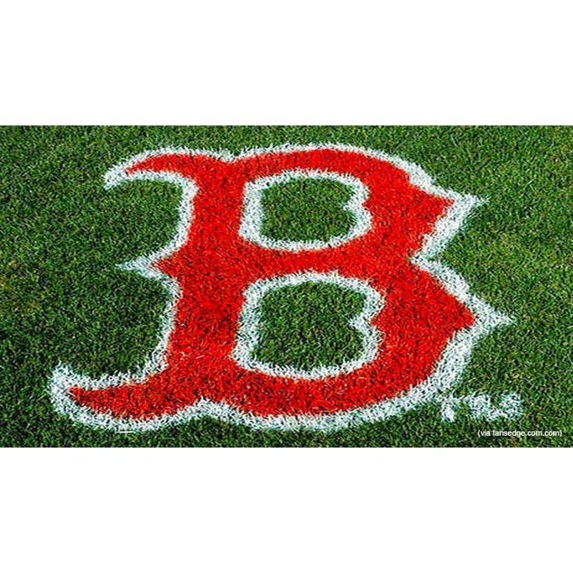 Mlb Boston Red Sox Lawn Logo Paint Stencil Sports Fan Stepping Stones