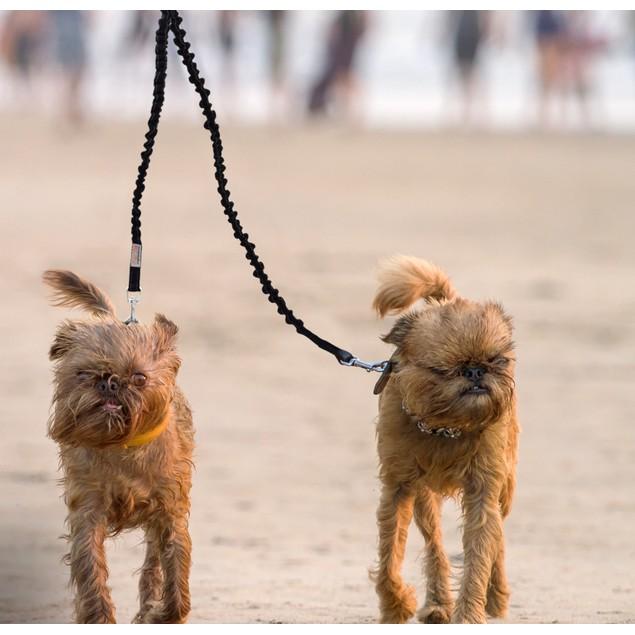 Waloo Pets Double Dog Bungee Dog Leash