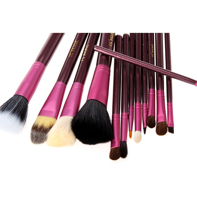 12 Professional Portable Makeup Brushes
