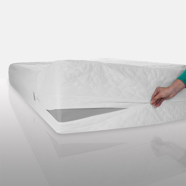 Remedy Bed Bug + Mite Mattress Protector