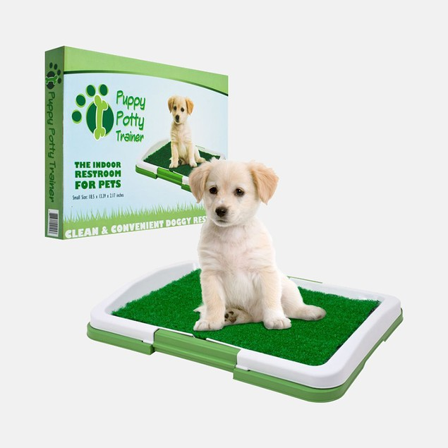 PAW Puppy Potty Trainer