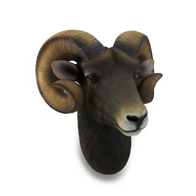 Ram Head Bust Sculptural Wall Hanging Wall Sculptures