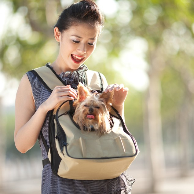 DoggyBoo Fashionable Pet Front Carrier