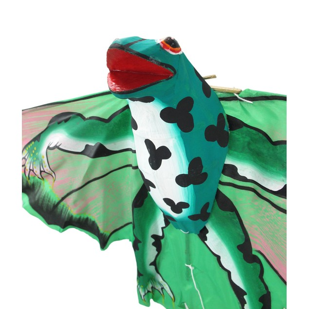 Frog Decorative Wall Hanging Kite Wall Sculptures