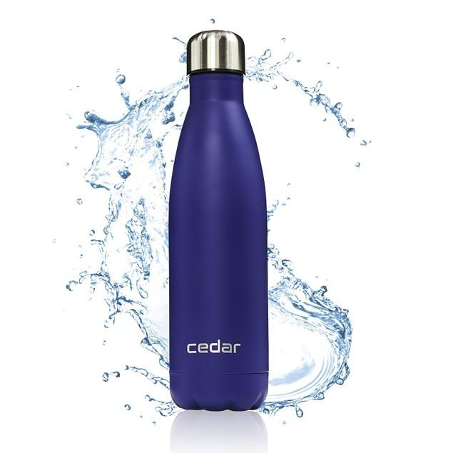 Cedar 17oz Stainless Steel Double Wall Water Bottle with Leak-Proof Cap