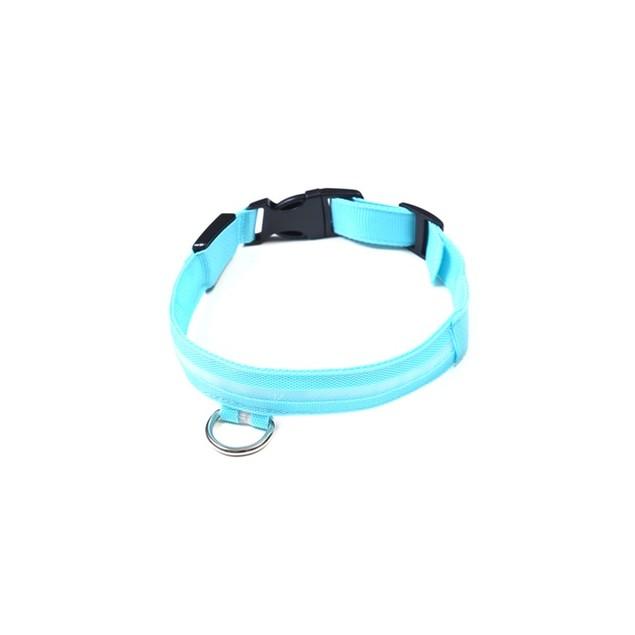 EZ-Pet LED Safety Pet Collar