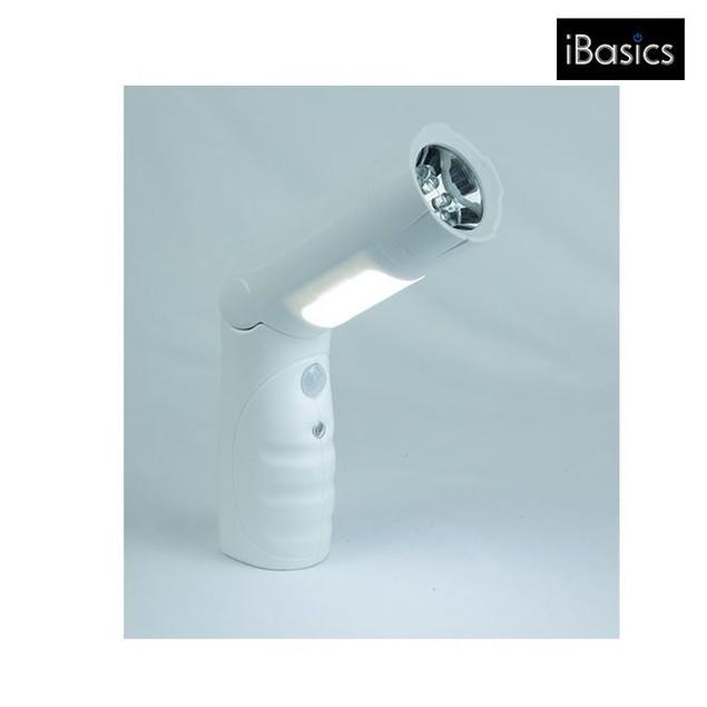 iBasics Super-Bright 12-LED Motion Sensor