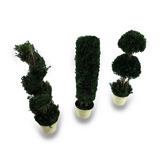 Decorative 3 Piece Tabletop Topiary Set 14 In. Sculptures