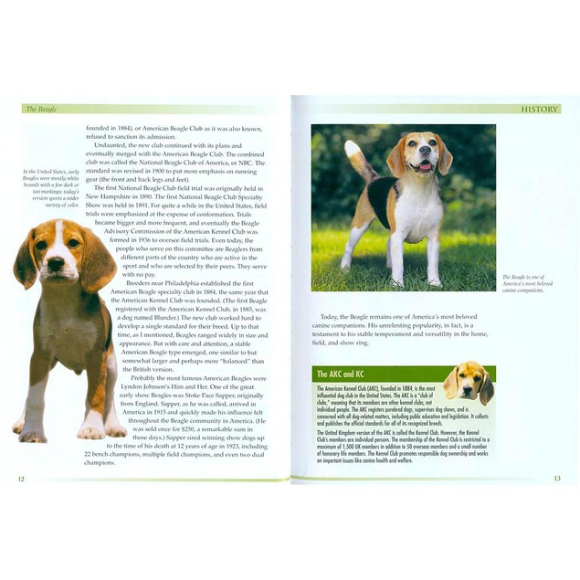 Terra Nova Beagle Book, Beagle by TFH Publications
