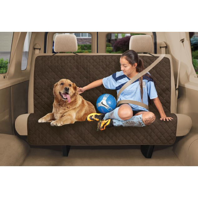 Dual Purpose Back Seat Cover