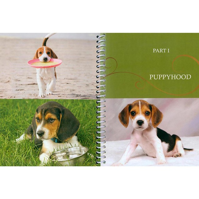 DogLife Beagle Book, Beagle by TFH Publications