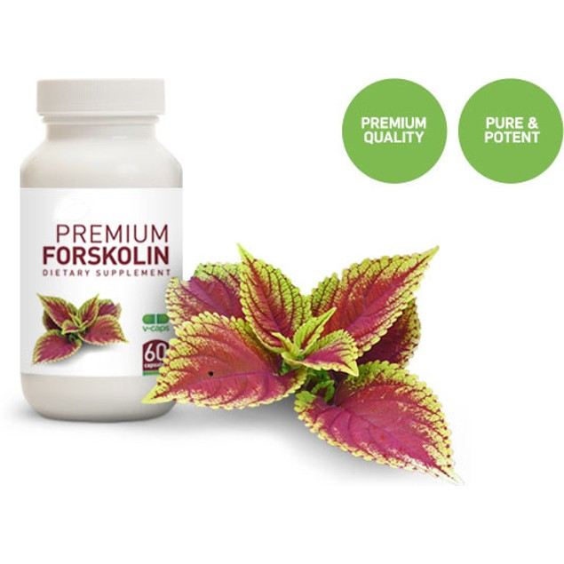 Pure Forskolin Extract 20% Standardized Max Strength - 3 Month Supply