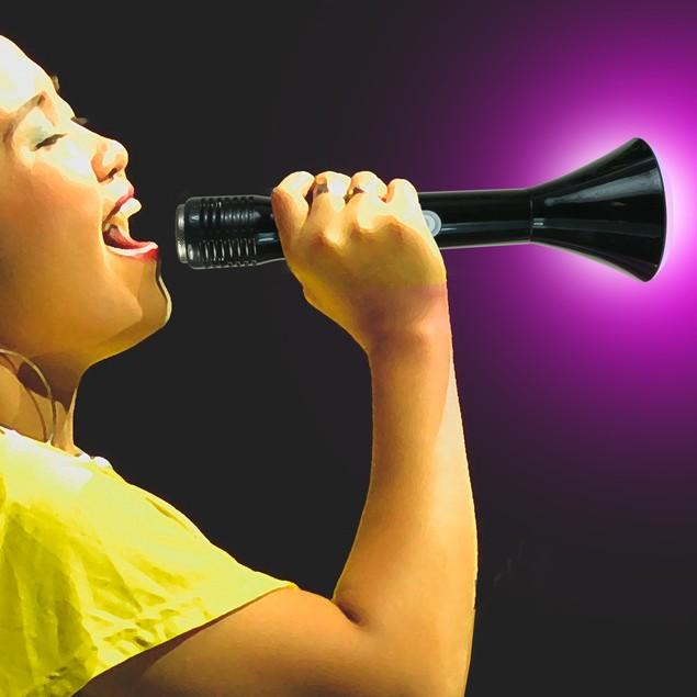 Wireless Karaoke Player W/ Bluetooth Function & LED Lights