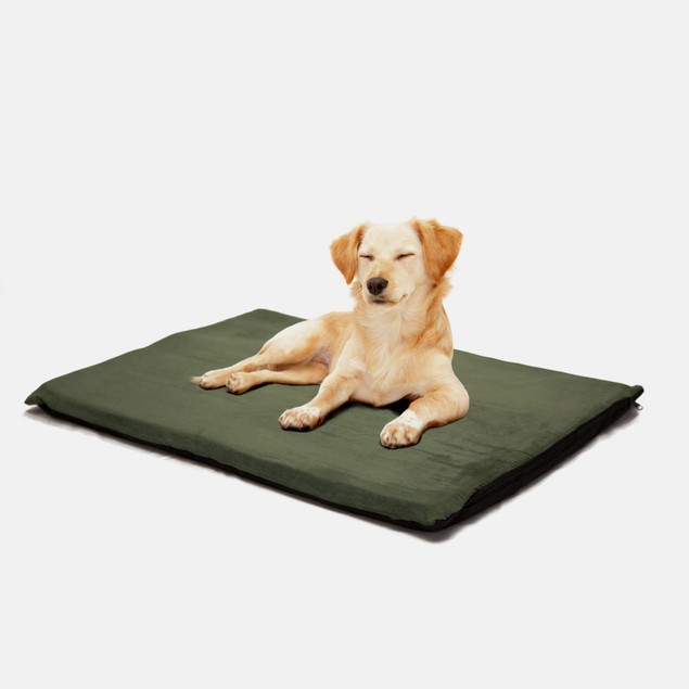 """PAW 2"""" Orthopedic Foam Pet Bed - Suede Forest"""
